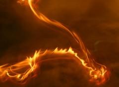 Fonds d'écran Nature Danse du feu