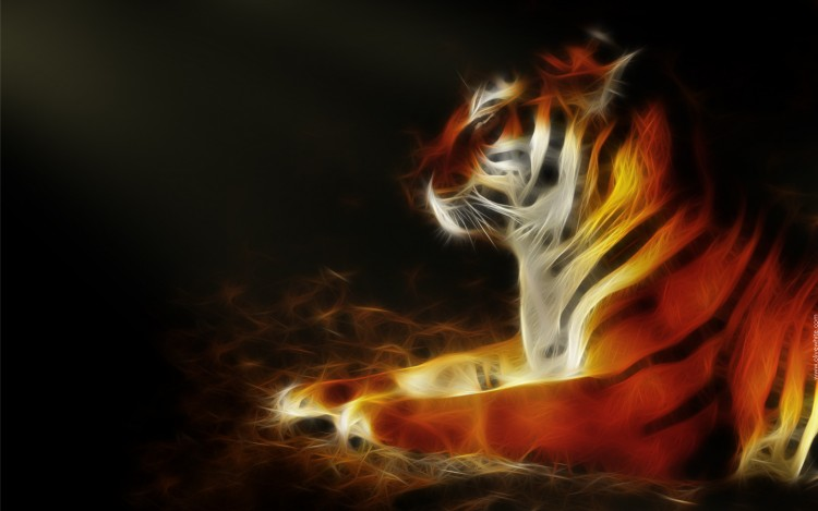Wallpapers Animals Felines - Tigers Tigry le Tigre