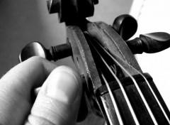 Fonds d'écran Musique Le violon