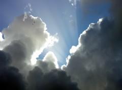 Fonds d'écran Nature Ciel sombre et lumineux