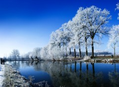 Fonds d'écran Nature Bleu givré
