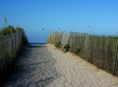 Wallpapers Trips : North America Parachute ascensionnel à Miami Beach