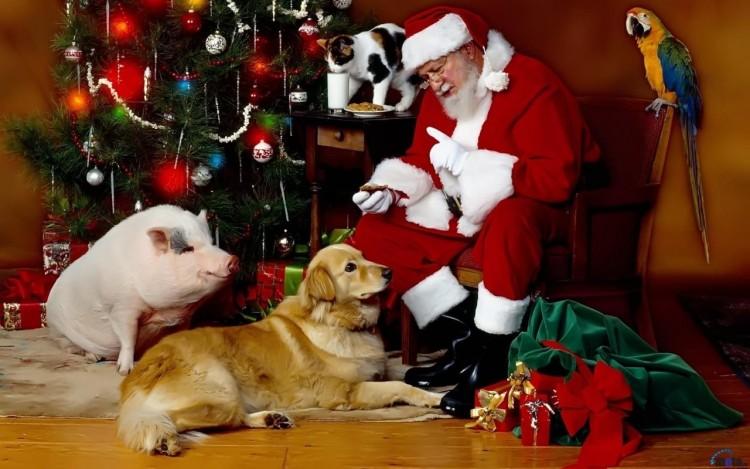 Fonds d'écran Art - Numérique Fêtes - Noël Santas Claus
