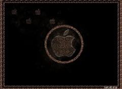 Fonds d'écran Informatique apple mac logo pomme léopard noir cercle sobre épuré