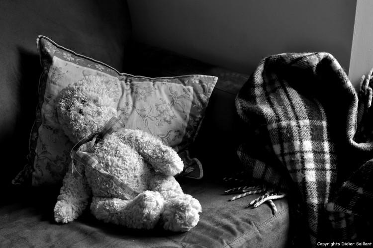 Fonds d'écran Objets Peluches english teddy bear