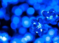 Wallpapers Objects Blue bokeh