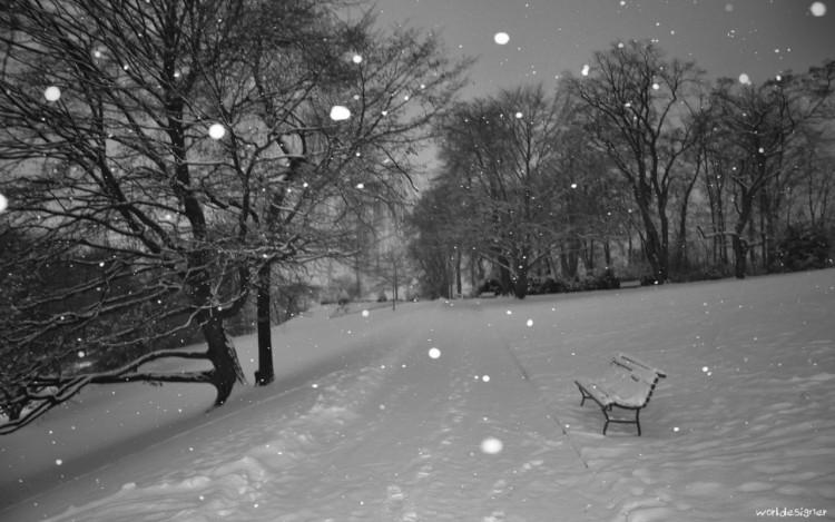 Wallpapers Nature Saisons - Winter Calme