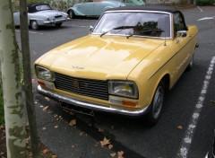 Fonds d'écran Voitures Peugeot 204