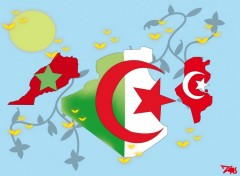 Fonds d'écran Art - Numérique Maghreb united