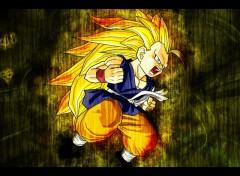 Fonds d'écran Manga Goku's Rage