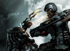Wallpapers Video Games Aliens vs predator