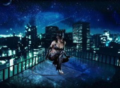 Fonds d'écran Comics et BDs The Night of Catwoman