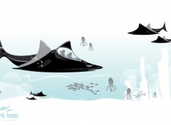 Fonds d'écran Art - Numérique Shark Team :)