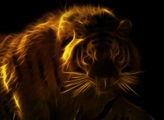 Wallpapers Animals tigre new generation