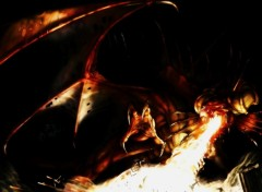 Fonds d'écran Fantasy et Science Fiction dragon de feu