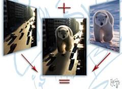 Wallpapers Digital Art Polar Bear + city