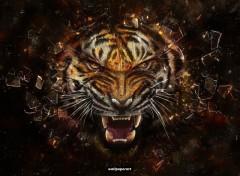Wallpapers Digital Art Tigres