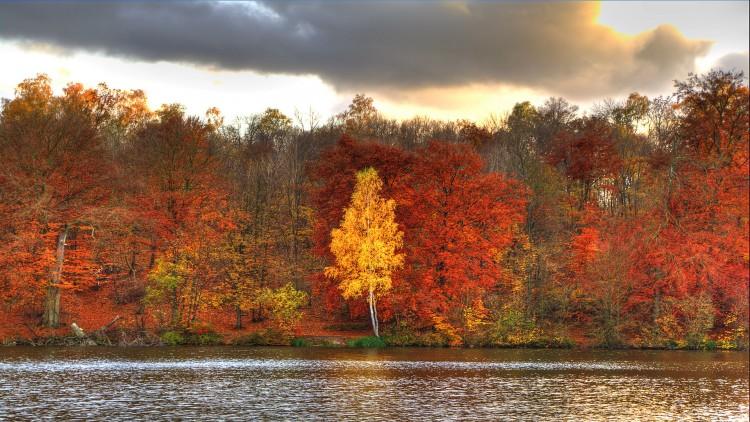 Fonds d'écran Nature Saisons - Automne Couleurs d'automne - 1