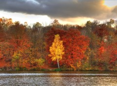 Wallpapers Nature Couleurs d'automne - 1