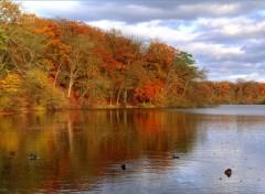 Fonds d'écran Nature Couleurs d'automne - 2