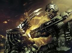 Wallpapers Movies Predator Vs Marine