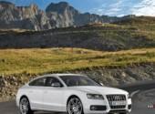 Fonds d'écran Voitures Audi S5 Sport Back