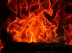 Fonds d'écran Nature feux de cheminée