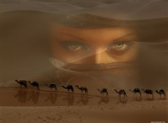 Wallpapers Fantasy and Science Fiction les yeux du desert