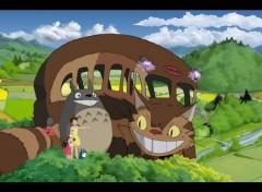 Fonds d'écran Dessins Animés Mon Voisin Totoro