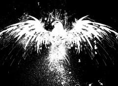 Wallpapers Digital Art Dark Eagle