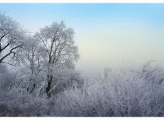 Wallpapers Nature D'hiver, le froid et calme.2.
