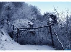 Fonds d'écran Nature D'hiver, le froid et calme.7.