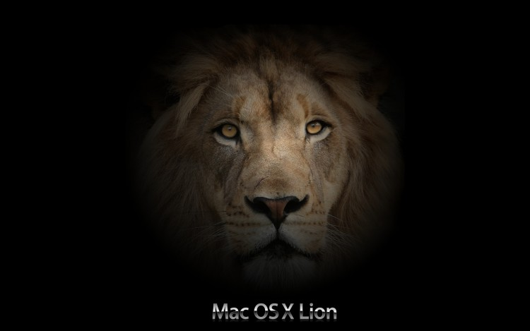 Fonds d'écran Informatique Apple Mac OS X Lion