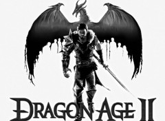 Fonds d'écran Jeux Vidéo dragon age II