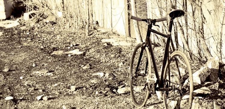 Wallpapers Various transports Bikes Dirt