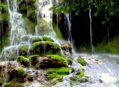Wallpapers Nature cascade verte