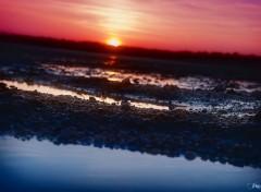 Fonds d'écran Nature Sunset in Morbihan