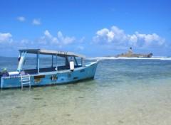 Fonds d'écran Nature Ile Maurice (île au phare)