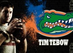 Fonds d'écran Sports - Loisirs Tim Tebow, ancien quaterback des Florida Gators, gagnant du Heisman Trophy en 2007