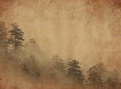 Wallpapers Digital Art forêt
