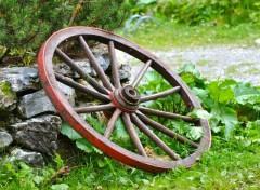 Fonds d'écran Nature la roue du destin