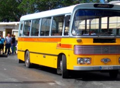 Fonds d'écran Transports divers bus de Malte