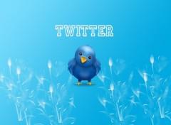 Fonds d'écran Informatique Twitter