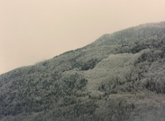 Fonds d'écran Nature Alpes