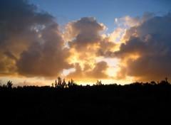 Fonds d'écran Nature Lever de soleil