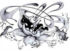 Fonds d'écran Art - Crayon Black Lotus