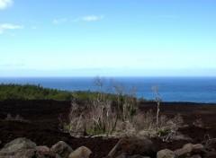 Wallpapers Trips : Africa Coulée de lave : Piton de la Fournaise