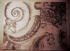 Fonds d'�cran Art - Crayon Coquillage