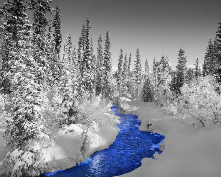 fonds d 39 cran nature fonds d 39 cran saisons hiver paysage d 39 hiver par darkf0rever. Black Bedroom Furniture Sets. Home Design Ideas