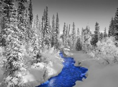Wallpapers Nature Paysage d'hiver